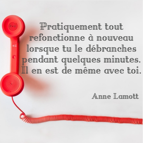 CITATION ANNE LAMOTT SOCIAL MEDIA WEB